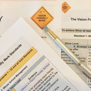 Vision Friendly Mark vision friendly practices