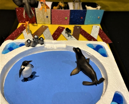 Penguin and rainbow zoo enclosure